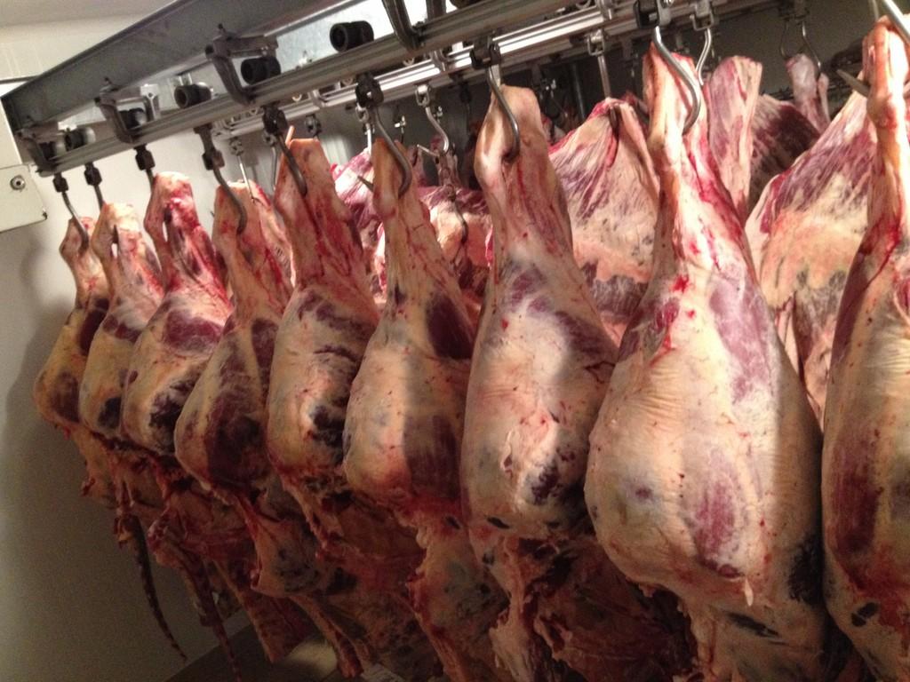 Chambre De Vieillissement Pour La Viande : Boucherie qualite traçabilité